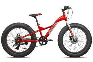 "Fat bike 24"""